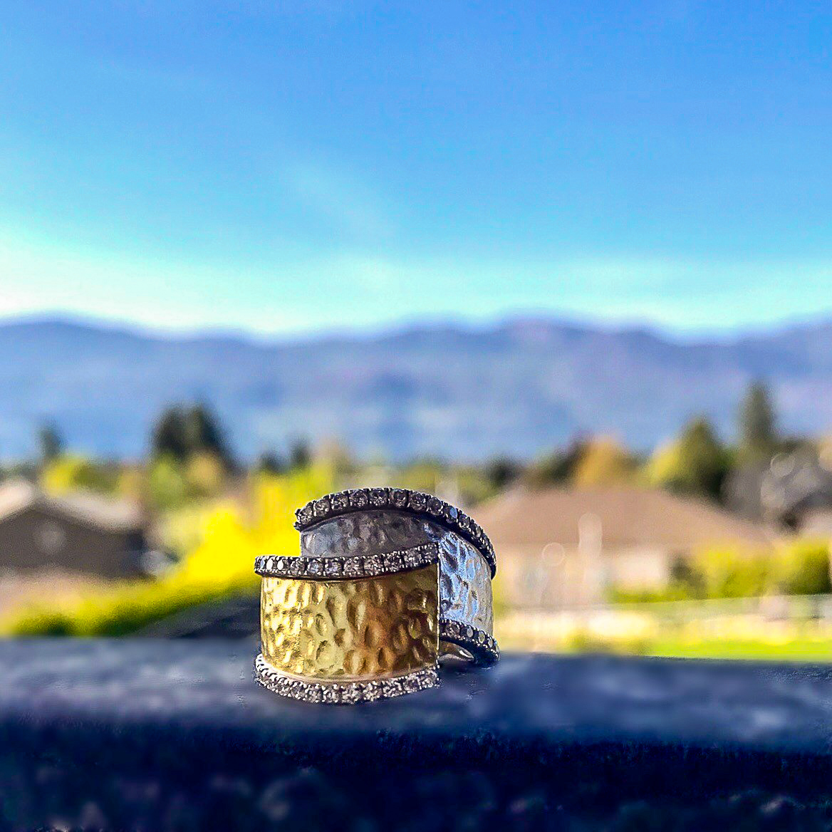 Ring With A View 2